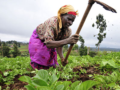 Create an enabling environment for effective participation of all stakeholders in the efficient use and management of Uganda's land resources for sustainable development.