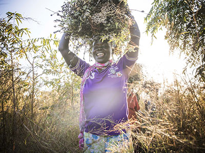 Uganda's land and natural resources used productively, efficiently and sustainably for present and future generations.